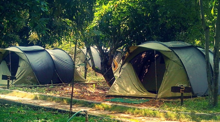 Campper Trekking And Camping Experiences In Kerala