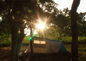 Camp Woody at Anayirangal